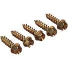 Jää kruvid Gold Screws(250 pcs)
